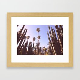 Palm trees, cactus and summer Framed Art Print