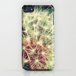Back Yard Fun iPhone Case