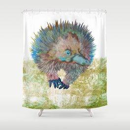 Echidna Explorer Shower Curtain