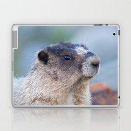The Marmot Laptop & iPad Skin