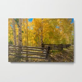 Aspen Autumn Color I - Southern Utah Metal Print