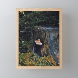 weeping polypore Framed Mini Art Print