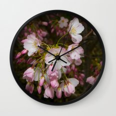 Pink and White Cherry Blossoms Wall Clock