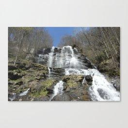 Waterfall allure Canvas Print