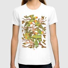 The extinction of the Carolina Parakeet. T-shirt