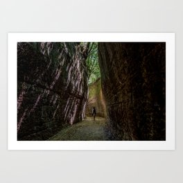 Via Cava, - ancient Etruscan path cut in tuff Art Print