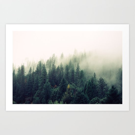 The Foggy Forest Art Print