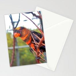 Dusky Lory Stationery Cards