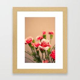 Carnation II Framed Art Print