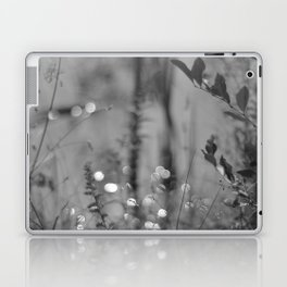 Summer Afternoon by the Pond in New Hampshire Laptop & iPad Skin