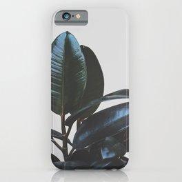 Botanical Art V4 #society6 #decor #lifestyle iPhone Case