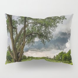 Big Tree - Tall Cottonwood and Passing Storm in Texas Pillow Sham