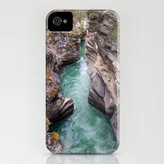 Nature's veins iPhone (4, 4s) Slim Case