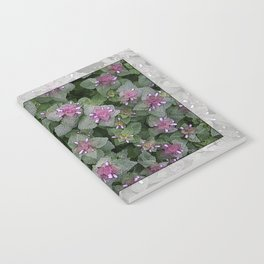 WILD SALVIA MAUVE AND GRAY GREEN Notebook