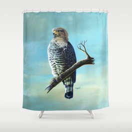 Southern Banded Snake Eagle Shower Curtain