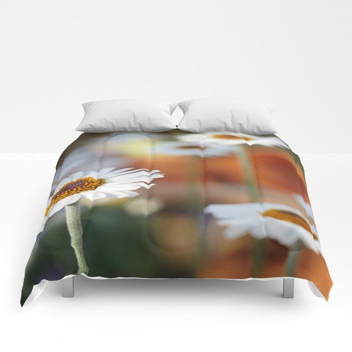 Daisys   marguerite Comforters