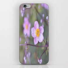 Spring Awaits  iPhone & iPod Skin