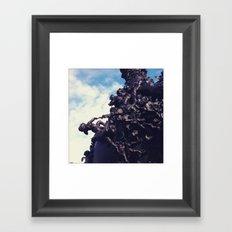 I Almost Have It!  Framed Art Print