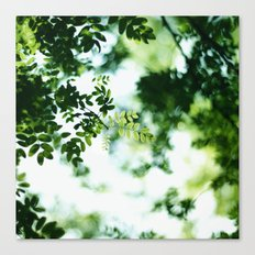 almost summer Canvas Print