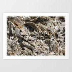 The Salton Sea Art Print
