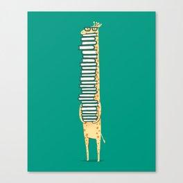 A book lover Canvas Print