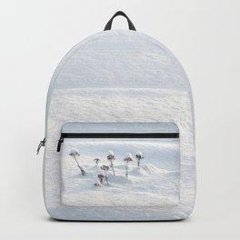 Winter Fairies Backpack