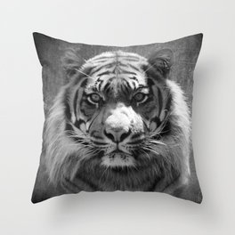 The eye of the tiger II (vintage) Throw Pillow