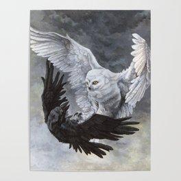 Yin Yang Owl and Raven Poster