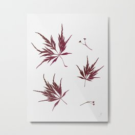Autumn Acer Metal Print