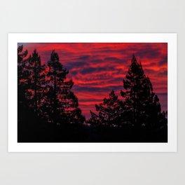 Black Trees Against a Flaming Sky Art Print