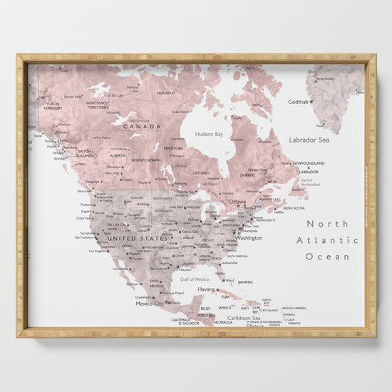 Dusty pink and grey detailed watercolor world map by blursbyaishop