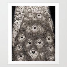 Peacock Detail Art Print