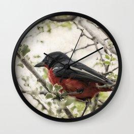 Crimson-breasted Shrike Wall Clock