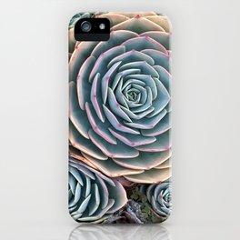California Succulents iPhone Case