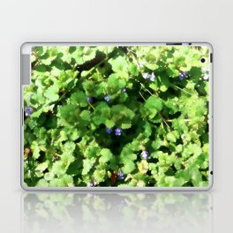 Ground Ivy 04 Laptop & iPad Skin