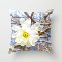 Magnolia White Flower Tree Spring Blossoms Star Shape Throw Pillow