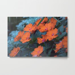 Longwood Gardens Autumn Series 330 Metal Print