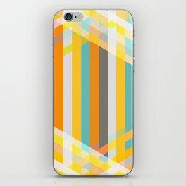 DecoStripe iPhone Skin