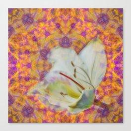 Bauhinia on vibrant kaleidoscope Canvas Print