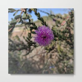Rancho Palos Verdes Nature Metal Print