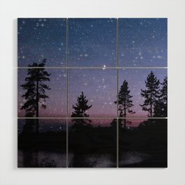 Twilight Forest Wood Wall Art