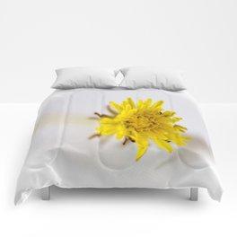 Baby Dandelion Comforters