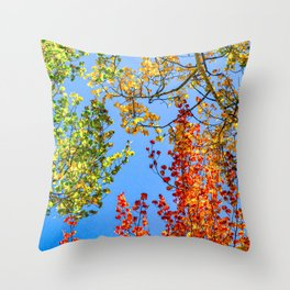 Aspen Color Candy // Green Yellow Red and Orange Fall Leaf Colors Throw Pillow