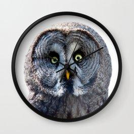 Big Moon Owl Wall Clock