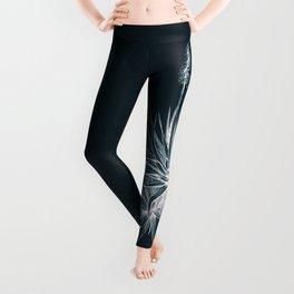 Cyanotype - Aloe Socotrina Leggings