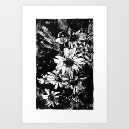 Ink drawing of camomiles, black and white Art Print