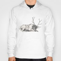 stag Hoodies featuring Stag // Graphite by Sandra Dieckmann