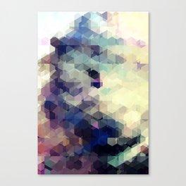 Reform 04. Canvas Print