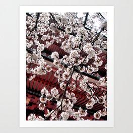 Destiny (Japan) Art Print