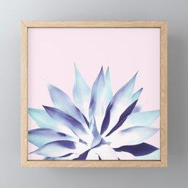 Solar Agave - Pastel blue on pink Framed Mini Art Print